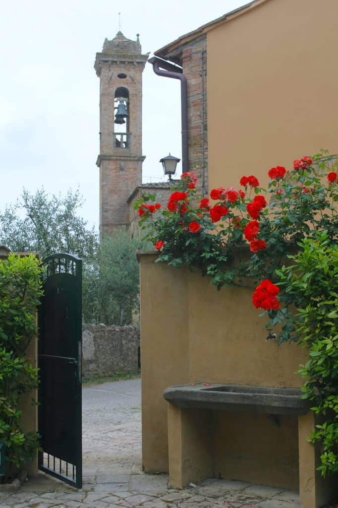 Open gate with red flowers on yellow wall with bell tower in background