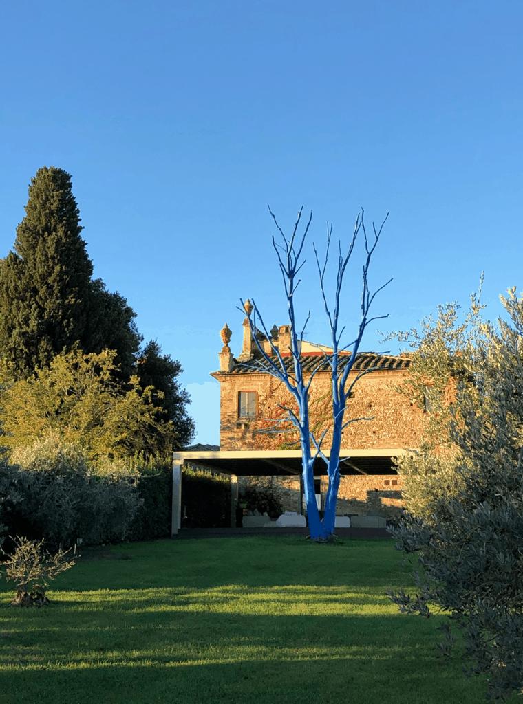 Blue tree landscape at Castellare Di Sernigi, home of A Writer Within's Tuscan Writing Retreat.